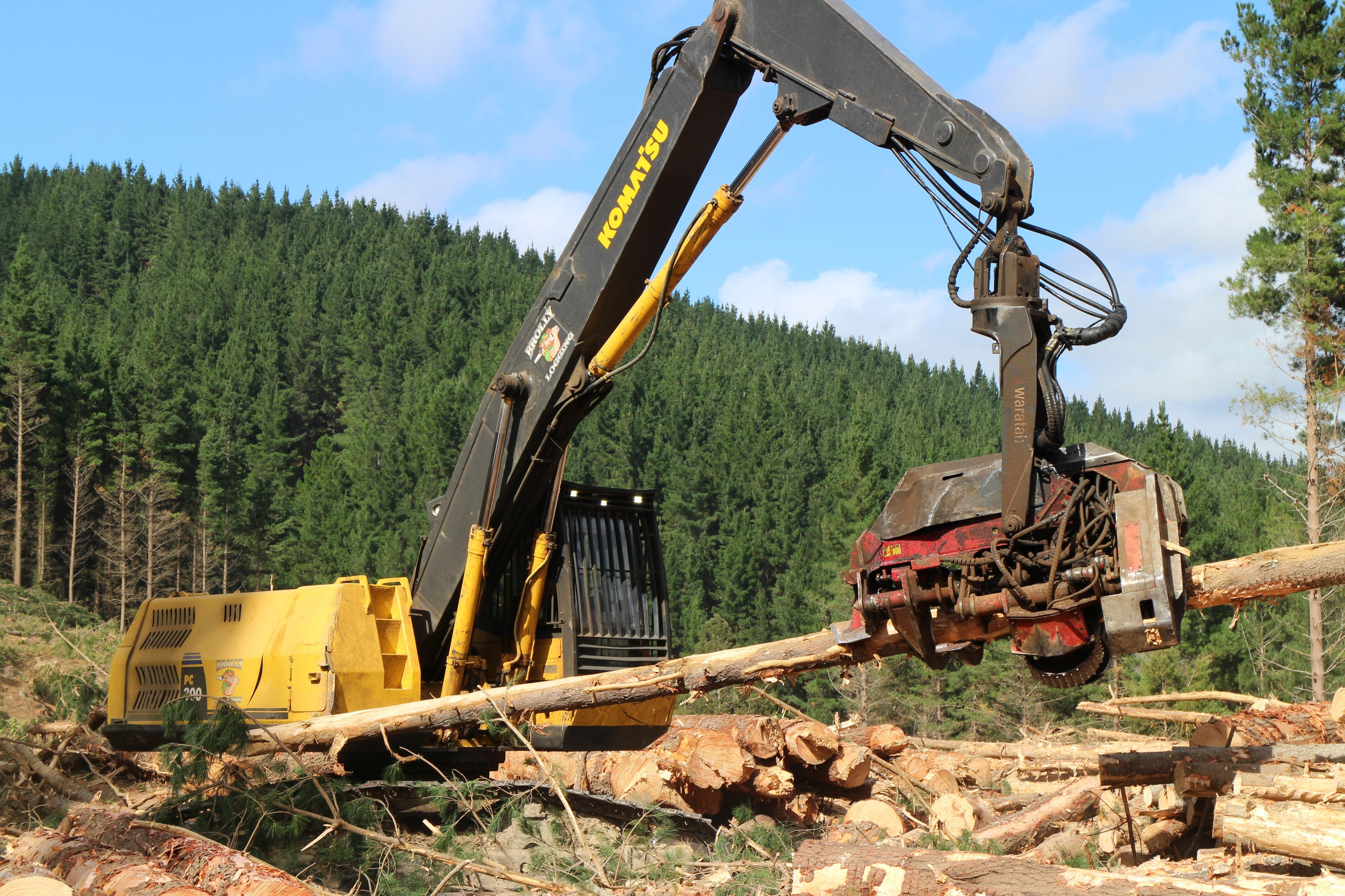 Brolly Logging Processor at work